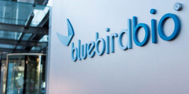 Bluebird сворачивает бизнес в Европе на фоне проблем с генной терапией
