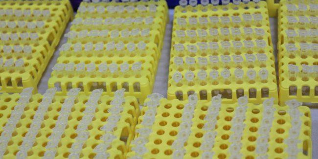 ГК Алкор Био намерена в два раза увеличить объем производства ПЦР тест-систем