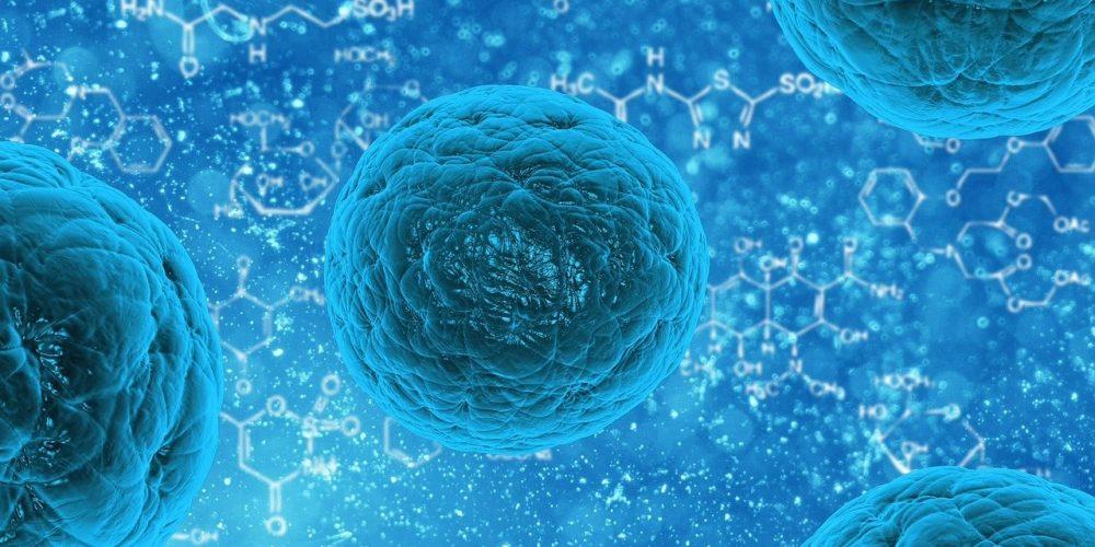 Разработаны правила ведения нацкаталога коллекционных штаммов патогенных микроорганизмов