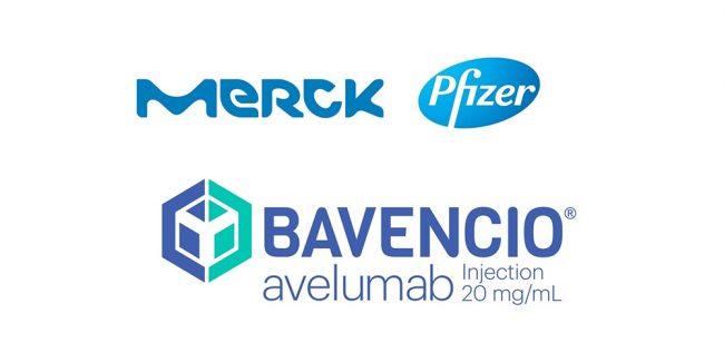Минздрав РФ одобрил применение препарата БАВЕНСИО® (авелумаб) альянса Merck и Pfizer