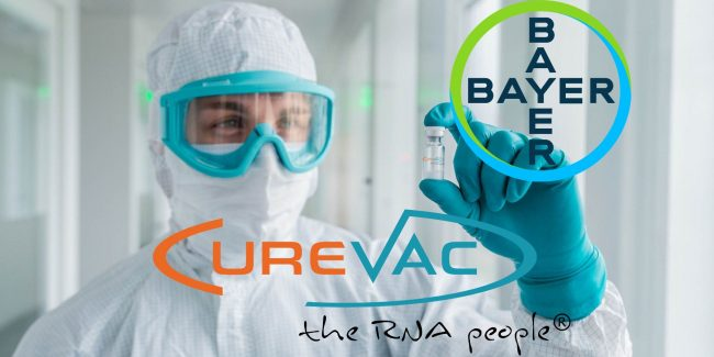 CureVac и Bayer объединили усилия для создания вакцины от COVID-19