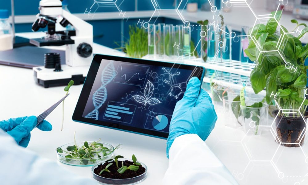 применение эфиромасличных и лекарственных растений