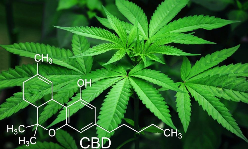KD Pharma приобрела швейцарского производителя каннабиноидов