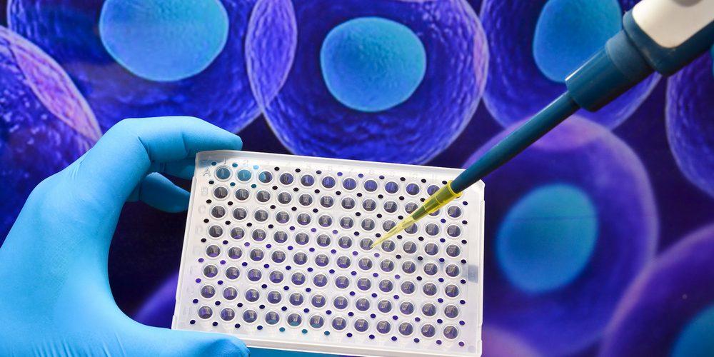 Immusoft и Takeda заключили соглашение о разработке клеточных терапий