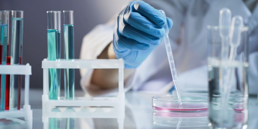 Eisai and BMS Enter Into Strategic Collaboration for MORAb-202 Antibody Drug Conjugate