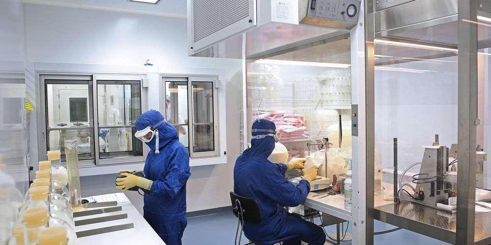 Французские производители ветеринарных препаратов и их инспектирование