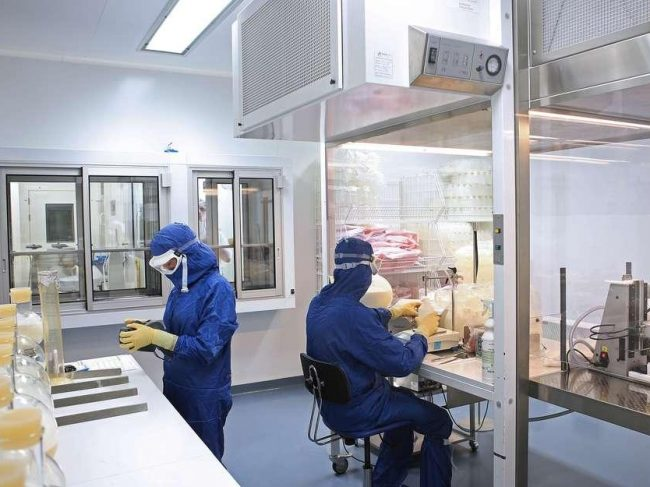French manufacturers of veterinary medicines and their inspection