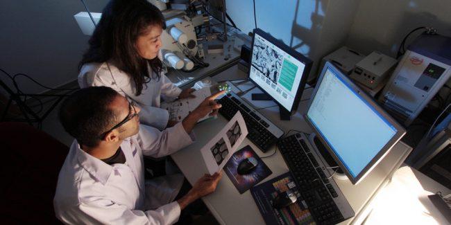 «Национальный Биосервис» разработал платформу для цифрового биобанка