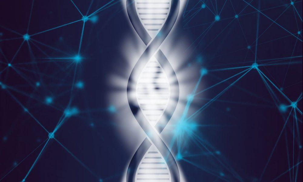 ДНК, разработка лекарств