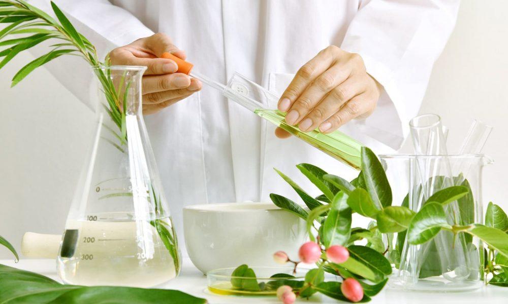 Растительные экстракты, исследования