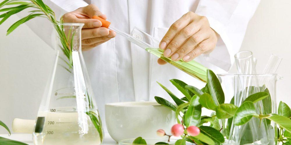 Рынок растительных экстрактов к 2026 году достигнет $55,3 млрд