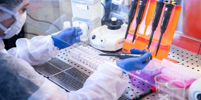 Вакцина от COVID-19, создаваемая в КФУ, вызвала образование специфических антител