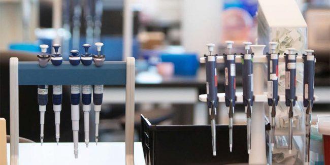 MSD прекращает разработку вакцин от COVID-19, ссылаясь на слабый иммунный ответ
