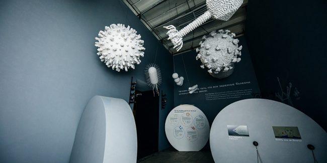 На выставке «Жизнь с вирусами» представили экспонаты из музея «Микрогена»