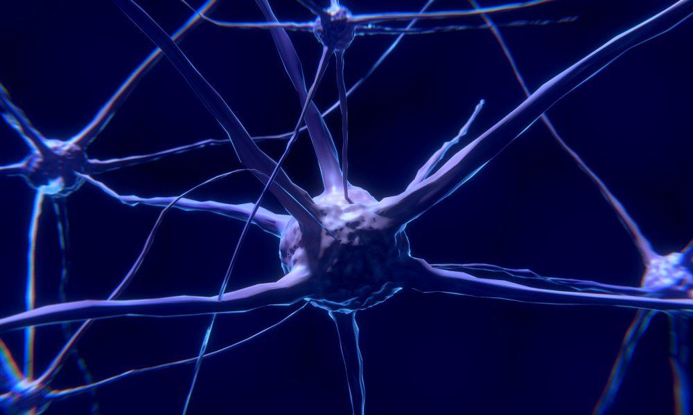 Anima Biotech и Takeda займутся разработкой нового класса лекарств
