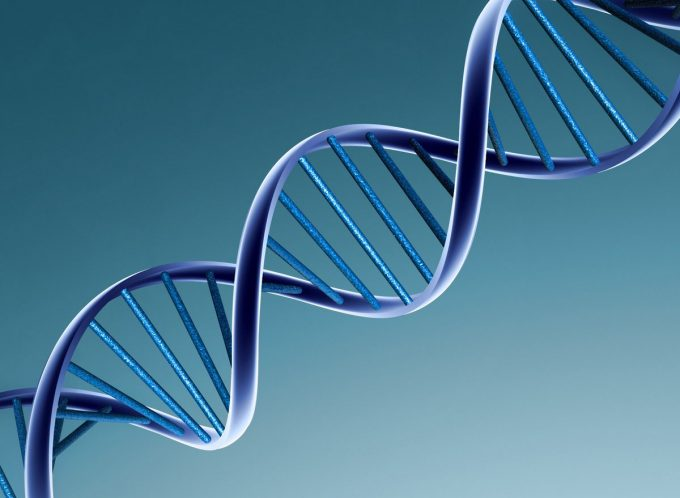 Институт Стволовых Клеток Человека